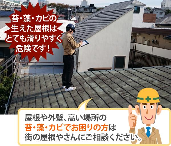 苔・藻・カビの 生えた屋根はとても滑りやすく危険です!