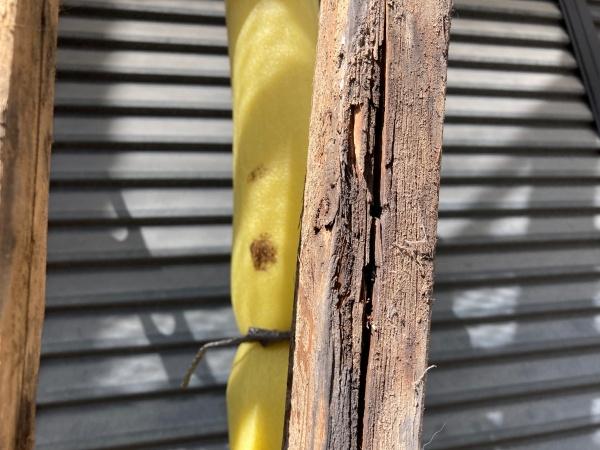 棟木状況 腐食