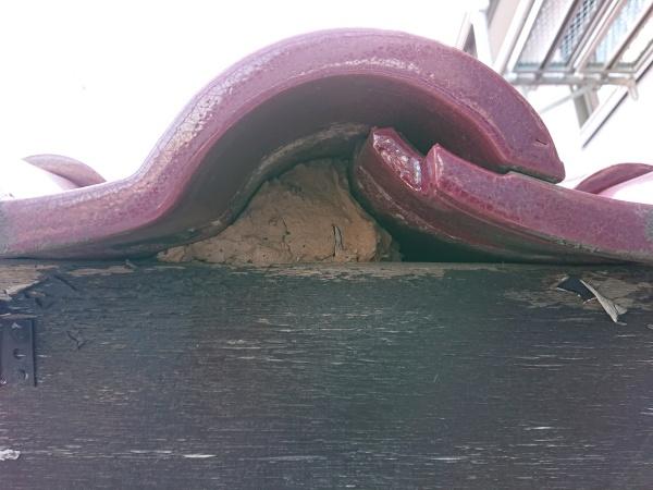 雀口漆喰 面戸板金
