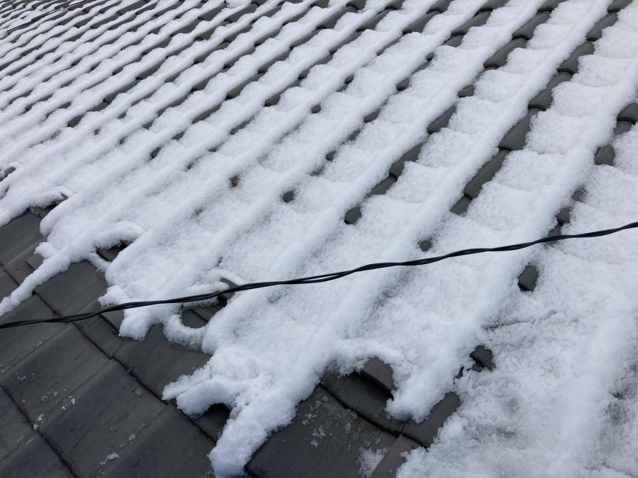 雪害 雪止めの有無