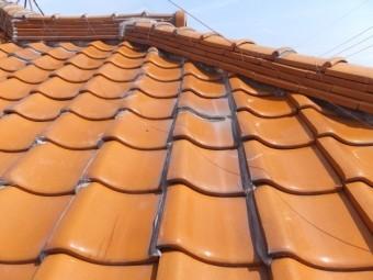モルタル外壁など屋根材や外壁材の表面が ざらざらのものや凹凸のあるものは苔・藻・カビが付着しやすい