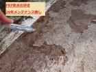 FRP防水 雨漏り