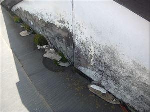 複合屋根 スレート 雨漏り