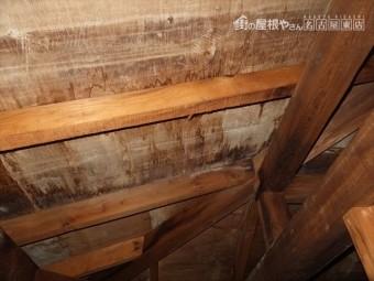 小屋裏 雨漏れ状況
