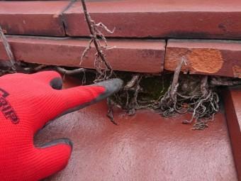 屋根の点検 棟下漆喰