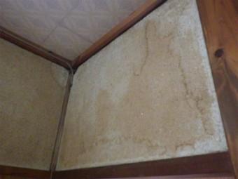 室内壁雨漏れ
