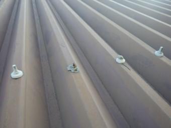 折半屋根ボルトキャップ脱落