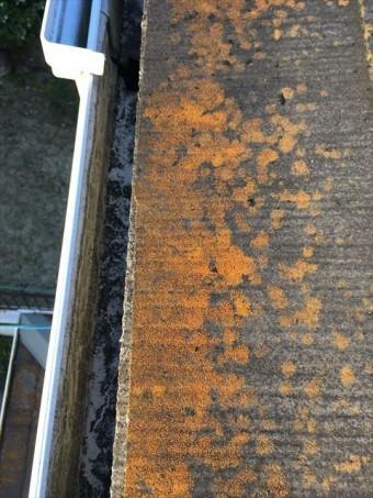 スレート屋根 点検 コケやカビ 付着 褪色