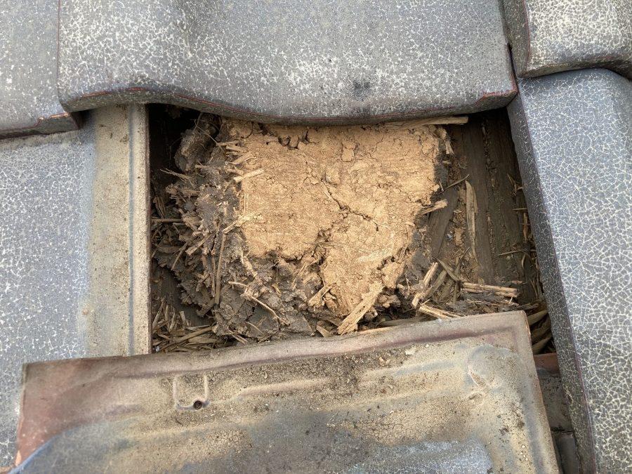 瓦屋根の点検 土葺き