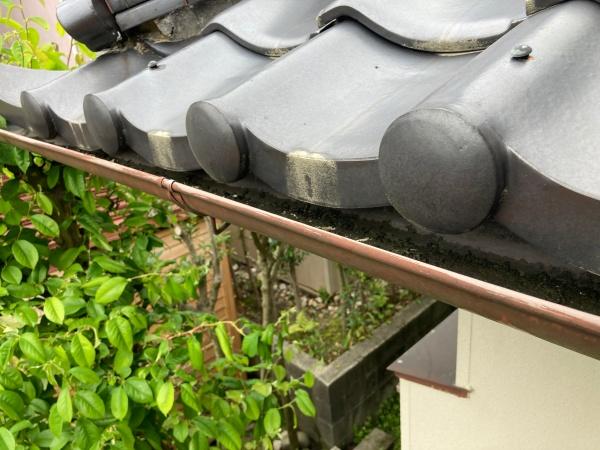 雨樋の劣化