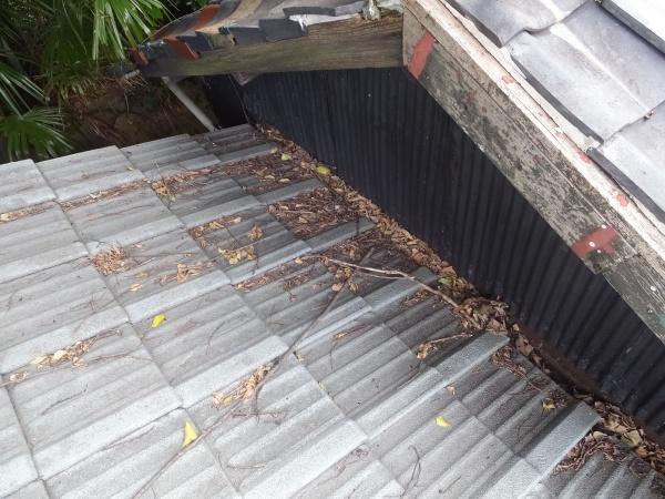 雨漏りの原因 枯れ葉の詰まり