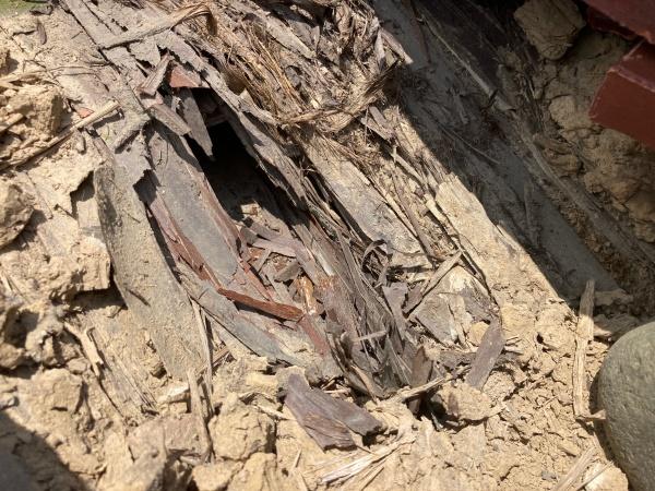 杉皮の穴 浸水する箇所