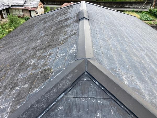 屋根の全景写真
