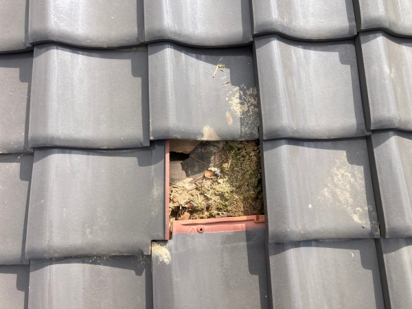 屋根復旧中 仮です