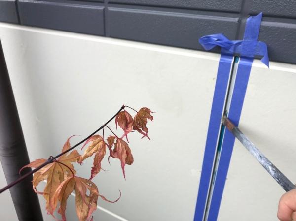 目地のプライマー塗布