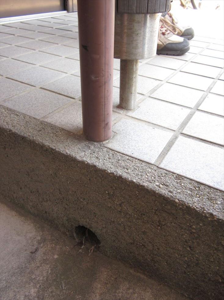 玄関タイル側面